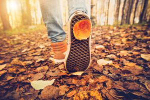 Feet sneakers walking on fall leaves Outdoor Autumn season